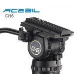 acebil-pdii-ch6sc